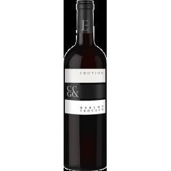 Durbacher Perlweine - 6 Flaschen Paket Badischer Wein eKfr. Selektion Badischer Wein eKfr. Selektion 31,74€