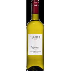 Herzog Christoph - 12 Flaschen Badischer Wein eKfr. Selektion 55/B02 100,00€