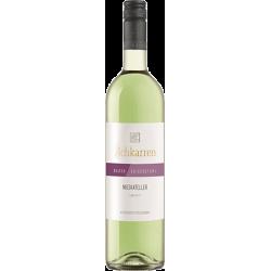 Blanc de Noir Kabinett trocken 19 Weinmanufaktur Gengenbach-Offenburg eG Weinmanufaktur Gengenbach-Offenburg eG 28/03631619 6...